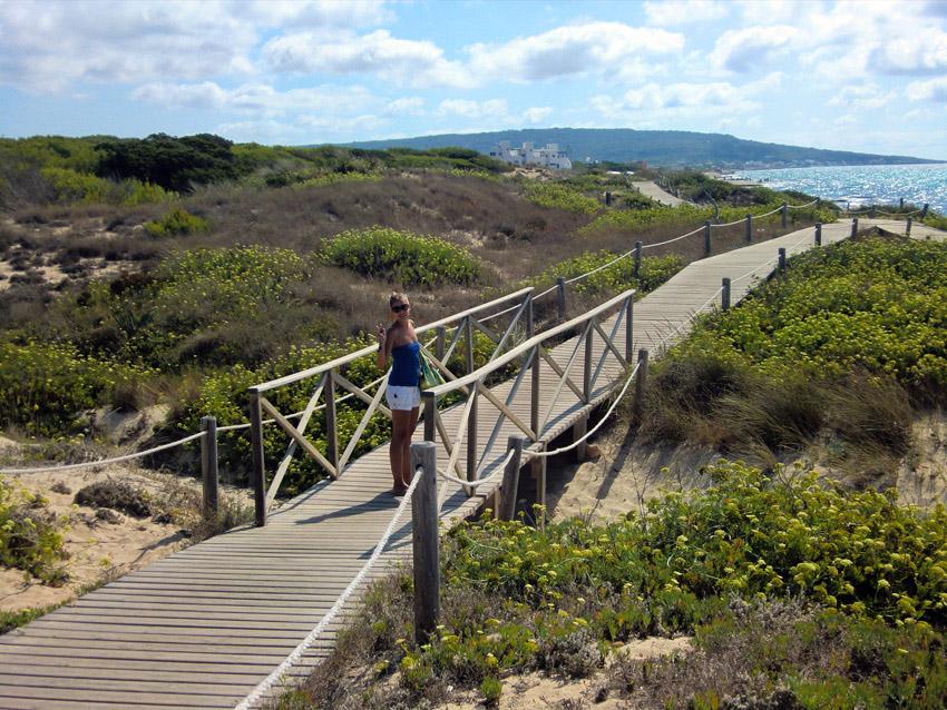 A lo largo de la costa nos esperan largas pasarelas, que protegen el sistema de dunas.